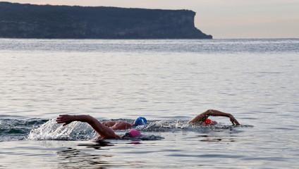 Ocean swim at Balmoral, Sydney