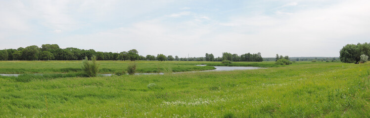 panorama of the river in the summer day