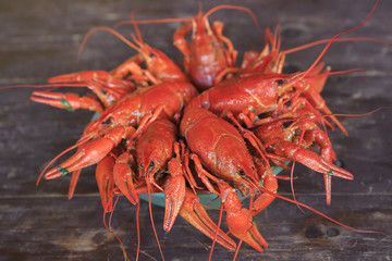Dish with boiled crawfish on a wooden table.