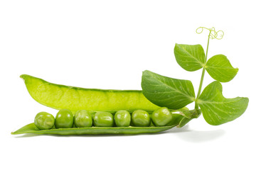 Fresh peas with green leaf isolated on white background