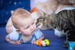 Bébé de 6 mois et jeune chat à la maison