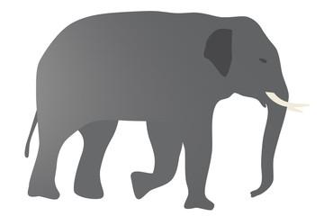 象のイラスト 右向き