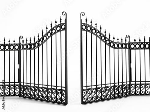 Black iron gate - 66615262