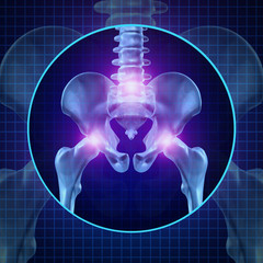 Back Joint Pain