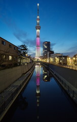 Tokyo sky tree in pink color at twilight