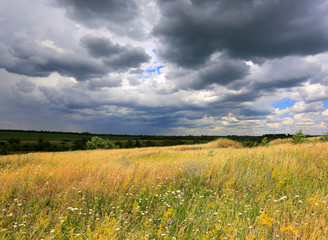 summer meadow under dark clouds