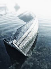Sunken wooden boat