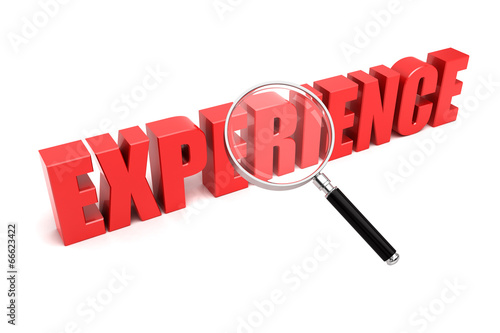 Experience search