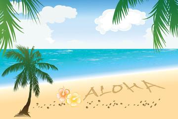 Aloha Hawaii beach travel concept