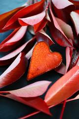 Blätter, Herz