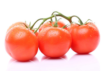 some ripe tomatoes on a branch
