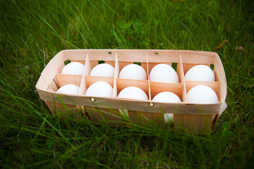 eggs in a wicker basket, green grass background