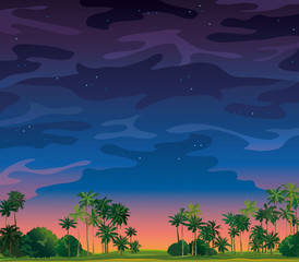 Night tropical landscape.