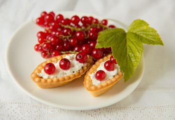 Tartlets with fresh red currant