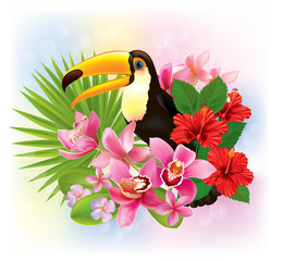 Tropical flowers and a toucan