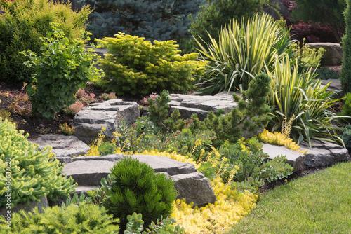 Fotobehang Tuin Rocks and Perennials
