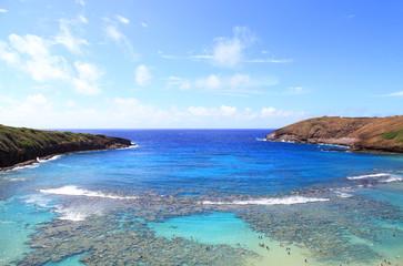 ハワイ ハナウマ湾の海