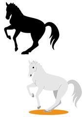 馬場馬術を演じる馬