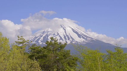 Spring Landscape of Mt.Fuji,Yamanashi,Japan