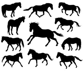 Set of 11 different moving horses silhouettes.