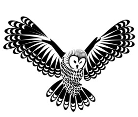 owl bird vector for mascot or tattoo design or idea of logo