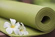 Leinwandbild Motiv yoga mat