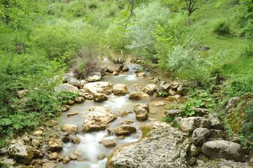 Yeşillikler İçinde Tokatlı Kanyonu Deresi