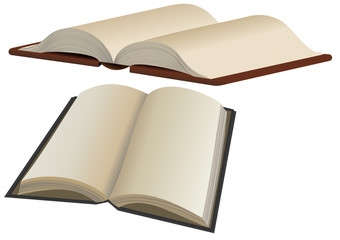Vector format of two opened books