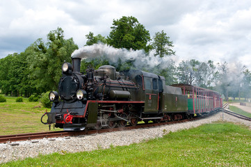steam narrow-gauge railway locomotive