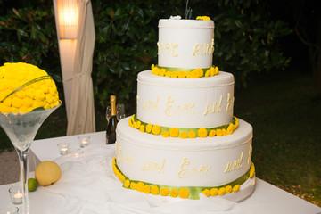 Cake designer torta  di matrimonio