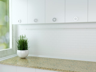 White kitchen design.