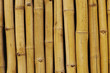Bambusreihe gelb