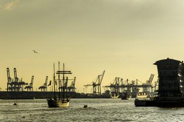 Segelschiff vor Container Terminal im Hafen Hamburg