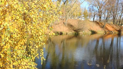 Beautiful  autumnal park and river