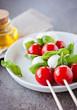 Tomaten-Mozzarella Snack