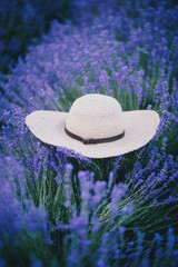 straw hat lies on lavender