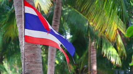 waving ripped flag of thailand against palm trees