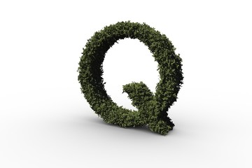 Letter q made of leaves