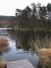 Lake during winter