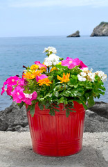 Flower Pot on Stone Wall with sea and boat in background