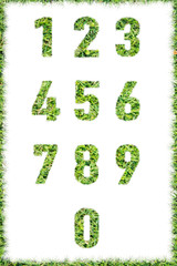 letter numbers made set green grass isolated