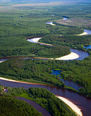Forest river, top view
