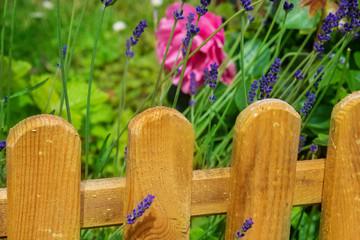 Holzzaun im Garten