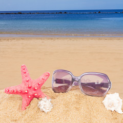 starfish and sunglasses in sand