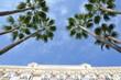 Hôtel à Cannes, French Riviera - 66676275