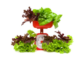 lettuce and kitchen scales isolated on white background