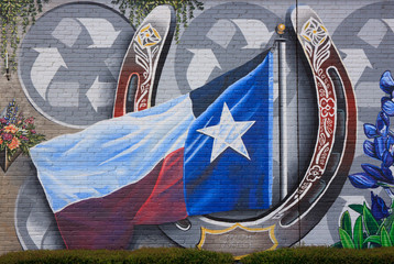 wall painting with Texas flag