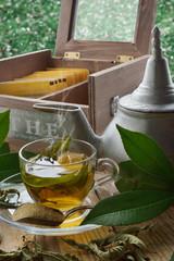 tè fumante e infusi sfondo verde