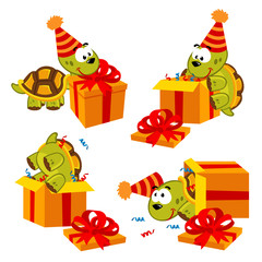 turtle and gift - vector  illustration, eps