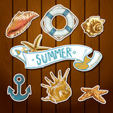 Summer Card with Sea Shells, Anchor, Lifeline poster